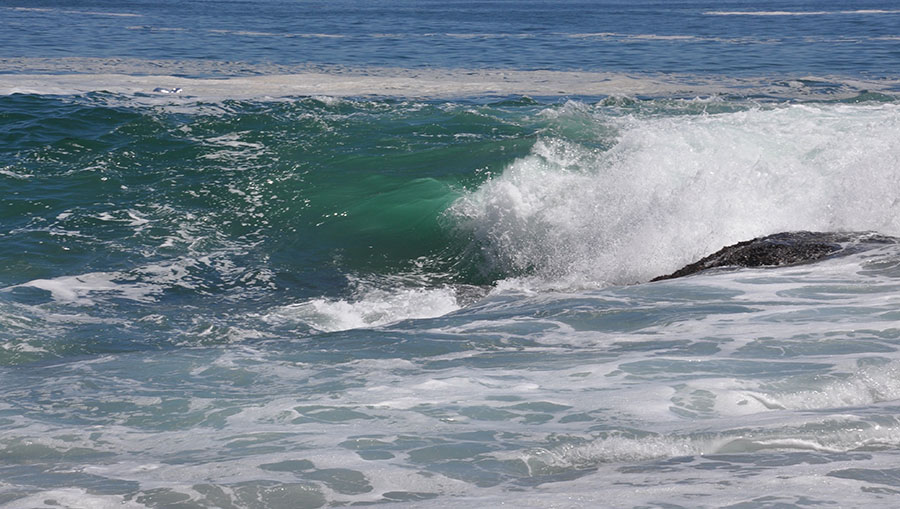 Serina Brinderson_seascapes_0083